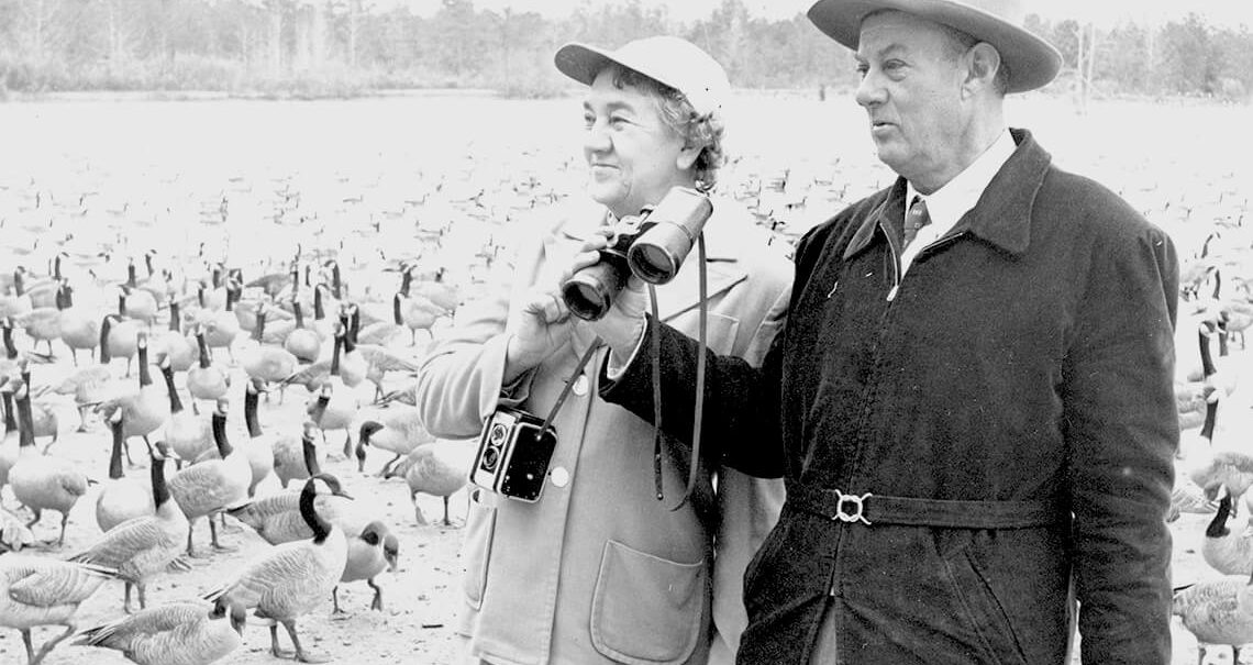 Hazel Gaddy and her husband stand surrounded by geese.